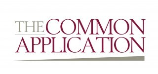 Common app essay questions 2014